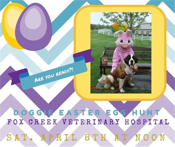 Doggie Easter Egg Hunt - Saturday, April 8, 2017 @ Fox Creek Veterinary Clinic in Wildwood
