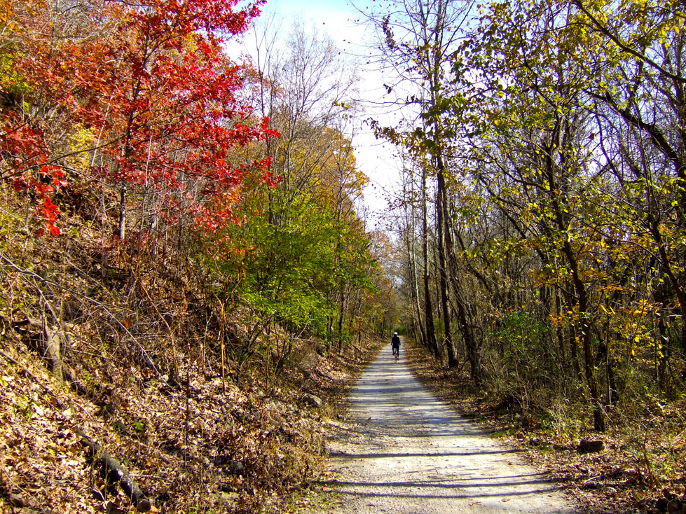 The Trail in the Fall